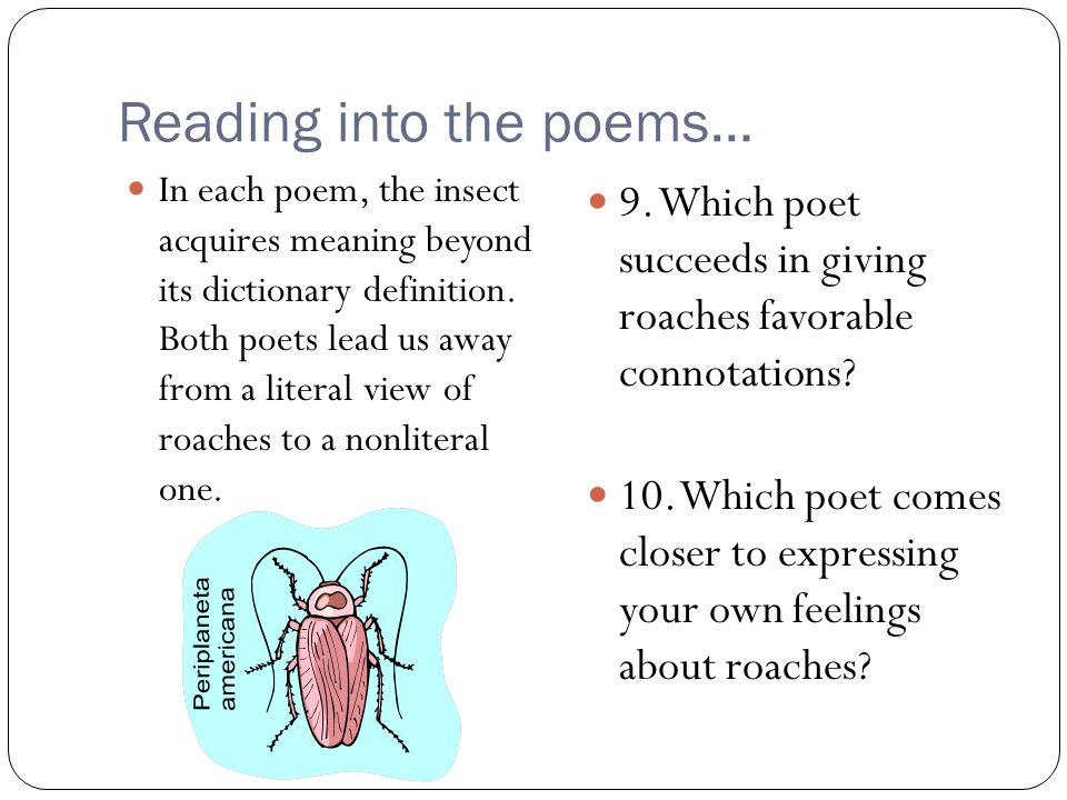 Reading into the poems… In each poem, the insect acquires meaning beyond its dictionary definition. Both poets lead us away from a literal view of roa