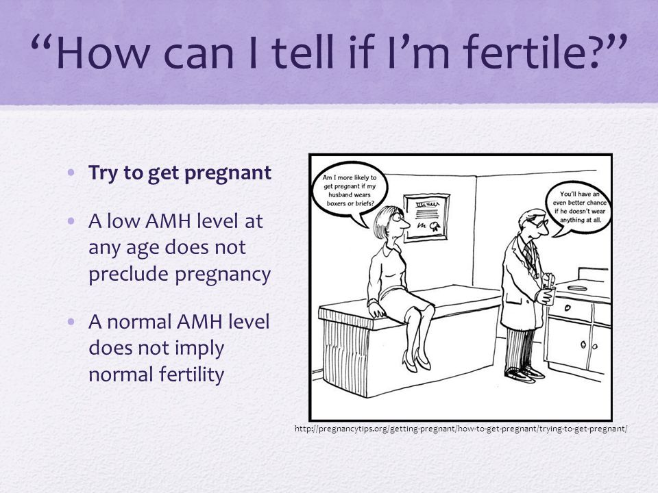 """""""How can I tell if I'm fertile?"""" Try to get pregnant A low AMH level at any age does not preclude pregnancy A normal AMH level does not imply normal f"""