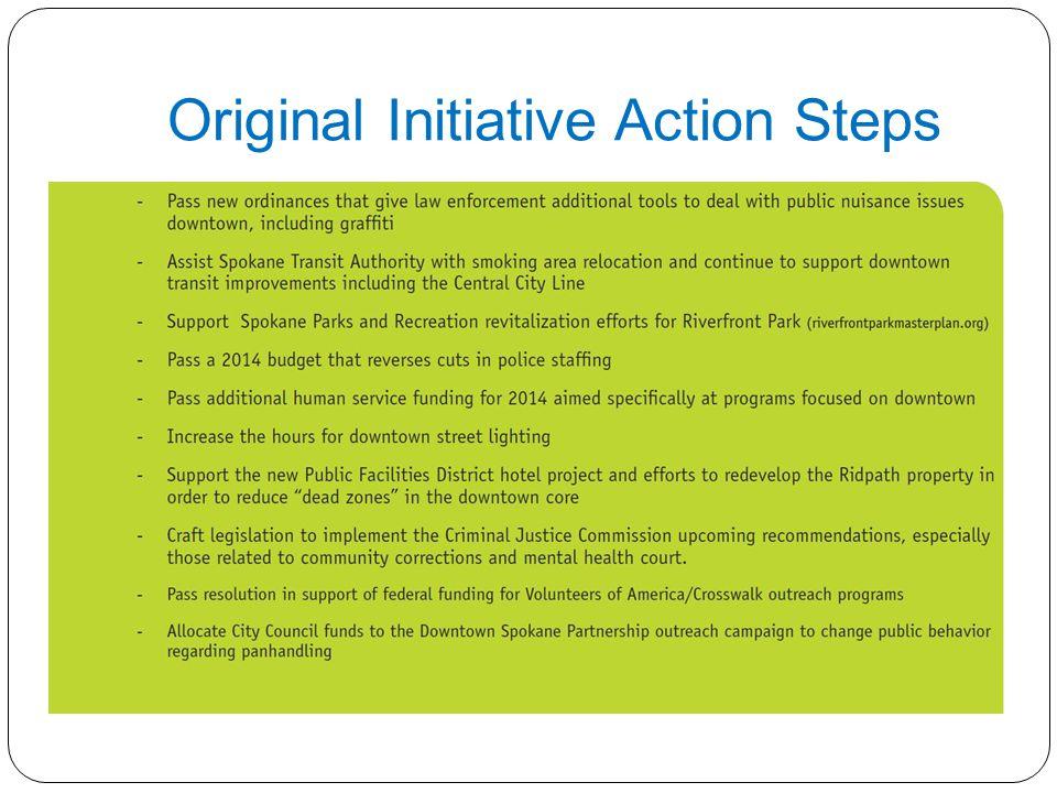 Original Initiative Action Steps