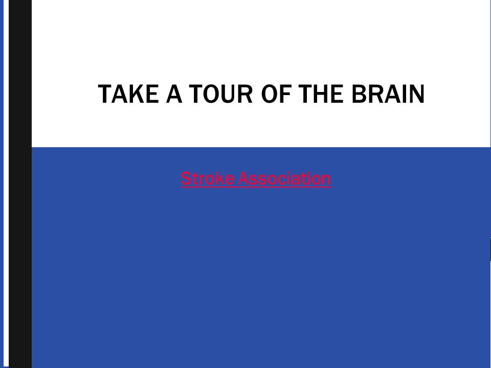 TAKE A TOUR OF THE BRAIN Stroke Association