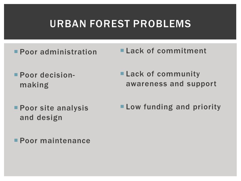  Poor administration  Poor decision- making  Poor site analysis and design  Poor maintenance URBAN FOREST PROBLEMS  Lack of commitment  Lack of community awareness and support  Low funding and priority