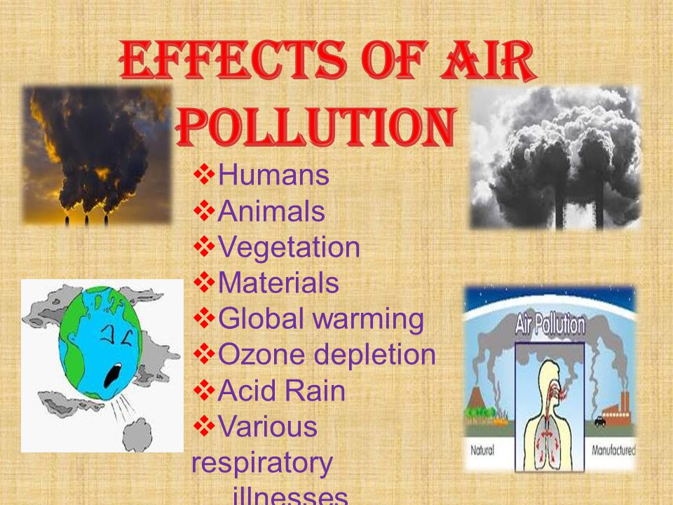  Humans  Animals  Vegetation  Materials  Global warming  Ozone depletion  Acid Rain  Various respiratory illnesses.