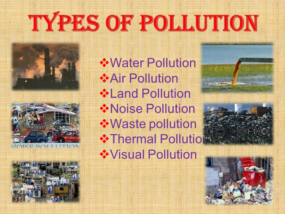  Water Pollution  Air Pollution  Land Pollution  Noise Pollution  Waste pollution  Thermal Pollution  Visual Pollution