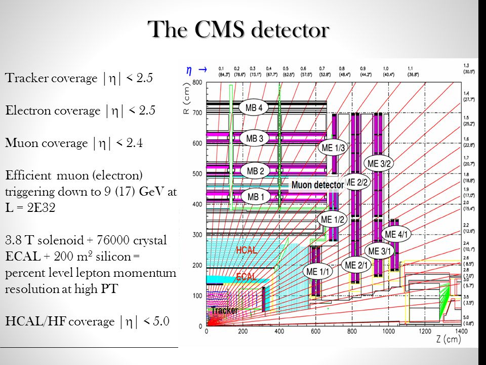 The CMS detector Tracker coverage |  | < 2.5 Electron coverage |  | < 2.5 Muon coverage |  | < 2.4 Efficient muon (electron) triggering down to 9 (17) GeV at L = 2E32 3.8 T solenoid + 76000 crystal ECAL + 200 m 2 silicon = percent level lepton momentum resolution at high PT HCAL/HF coverage |  | < 5.0