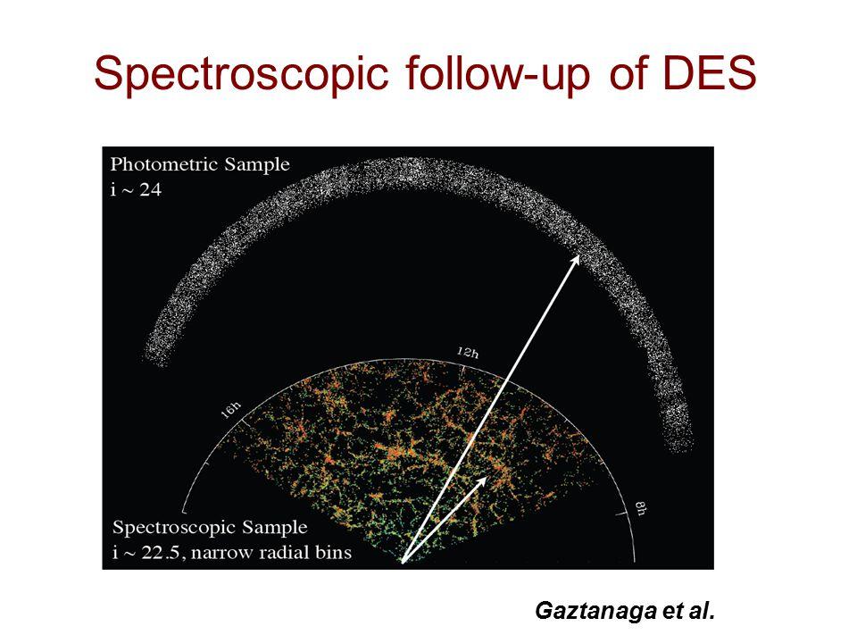 Spectroscopic follow-up of DES Gaztanaga et al.