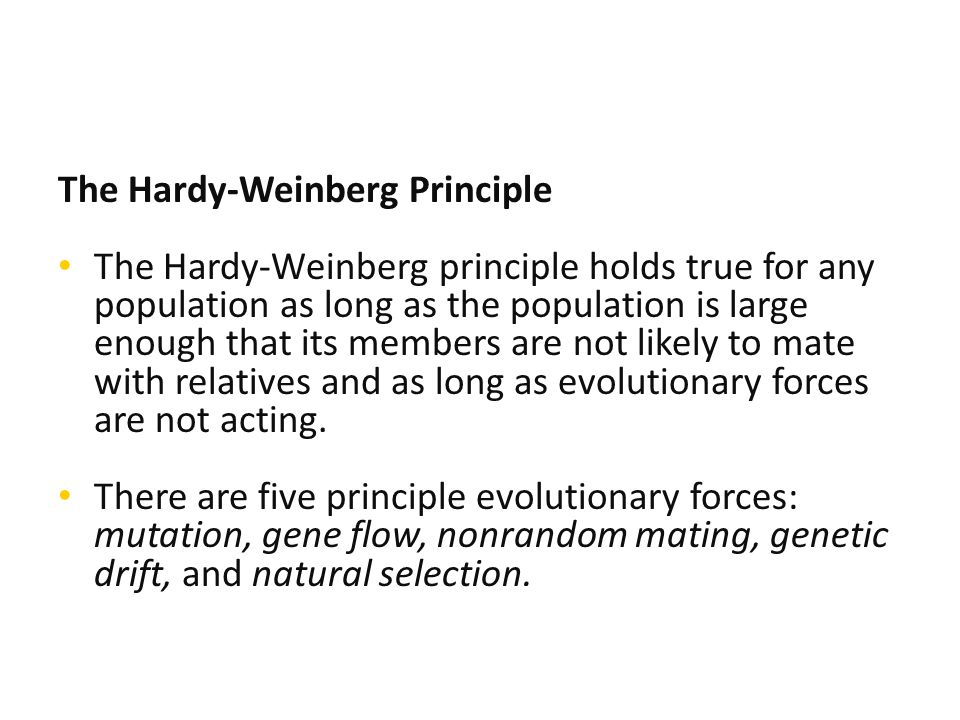 The Hardy-Weinberg Principle The Hardy-Weinberg principle holds true for any population as long as the population is large enough that its members are not likely to mate with relatives and as long as evolutionary forces are not acting.