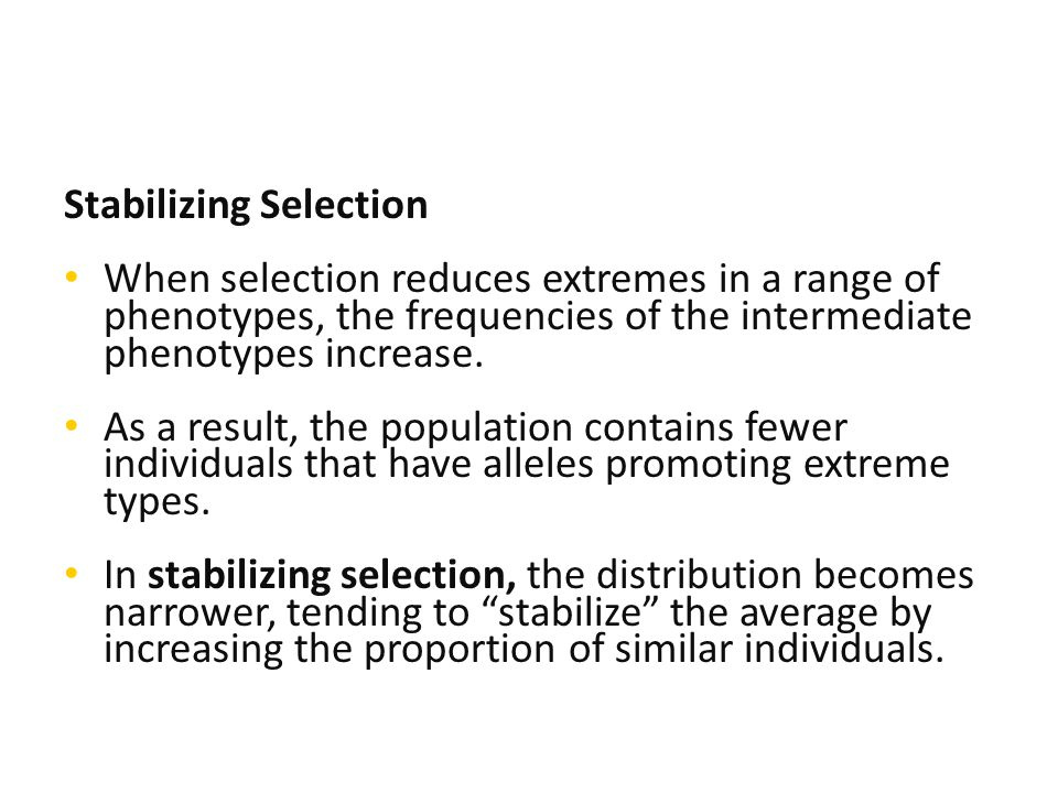Stabilizing Selection When selection reduces extremes in a range of phenotypes, the frequencies of the intermediate phenotypes increase.