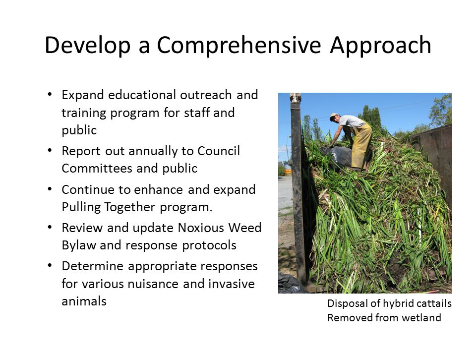 Develop a Comprehensive Approach Expand educational outreach and training program for staff and public Report out annually to Council Committees and public Continue to enhance and expand Pulling Together program.