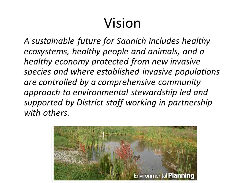 Vision A sustainable future for Saanich includes healthy ecosystems, healthy people and animals, and a healthy economy protected from new invasive species and where established invasive populations are controlled by a comprehensive community approach to environmental stewardship led and supported by District staff working in partnership with others.