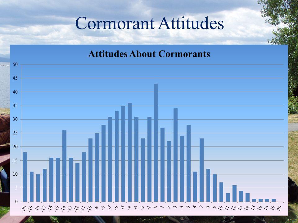 Cormorant Attitudes Positive Statements (e.g.): A large nesting colony of cormorants is an impressive sight Cormorants are an important part of the La