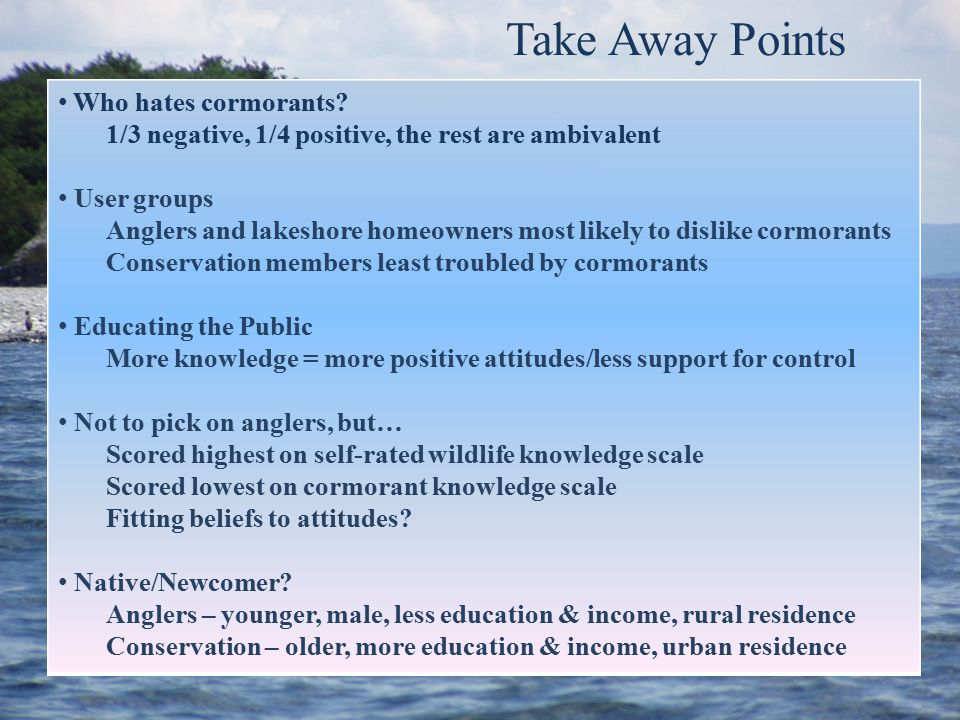 Take Away Points Who hates cormorants? 1/3 negative, 1/4 positive, the rest are ambivalent User groups Anglers and lakeshore homeowners most likely to