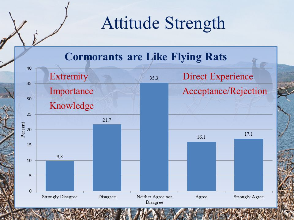 Attitude Strength Extremity Importance Knowledge Acceptance/Rejection Direct Experience