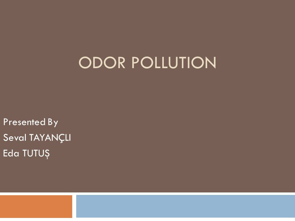 ODOR POLLUTION Presented By Seval TAYANÇLI Eda TUTUŞ