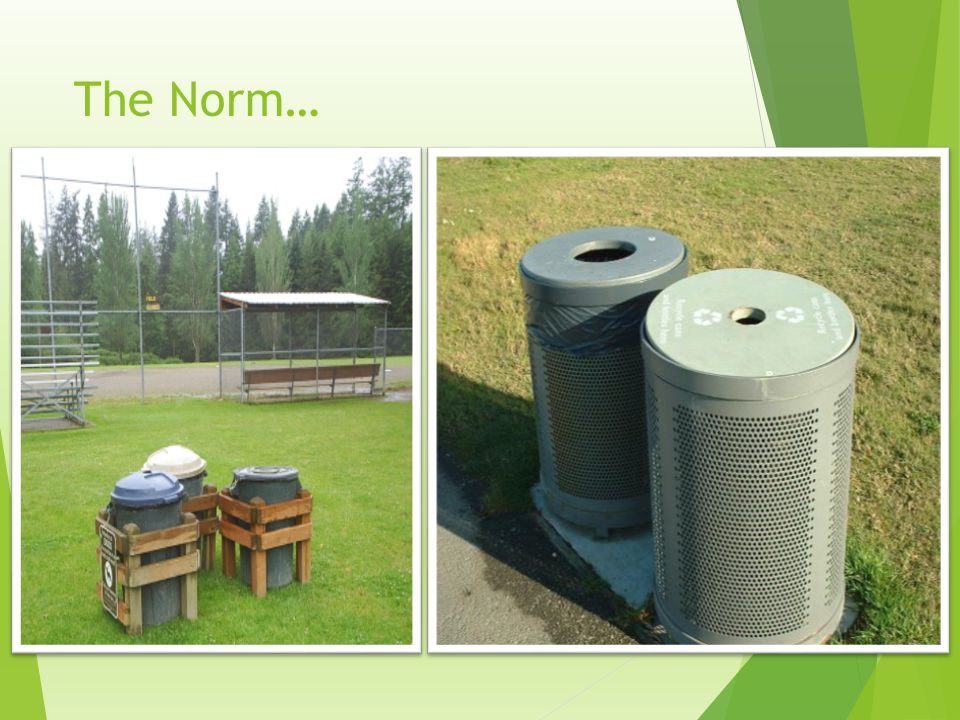 The Issues: Animals, Birds, Wind and Over-Flowing Trash Cans Would this keep a bear out.