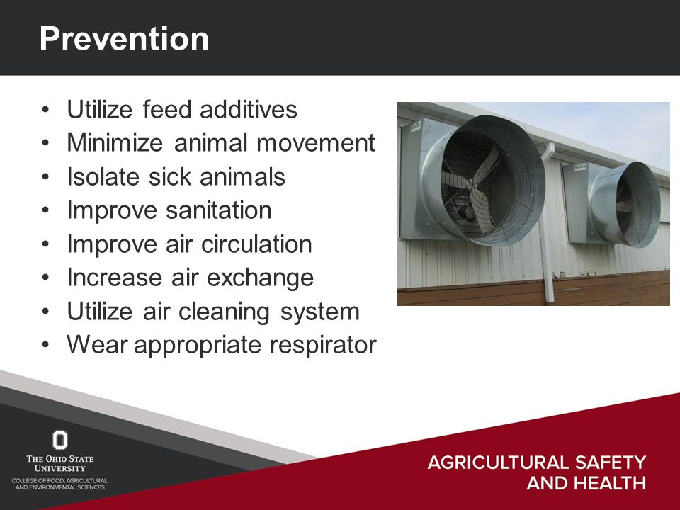 Prevention Utilize feed additives Minimize animal movement Isolate sick animals Improve sanitation Improve air circulation Increase air exchange Utilize air cleaning system Wear appropriate respirator