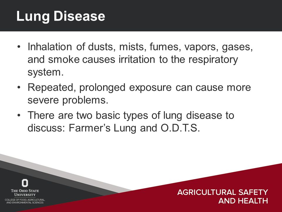 Lung Disease Inhalation of dusts, mists, fumes, vapors, gases, and smoke causes irritation to the respiratory system.