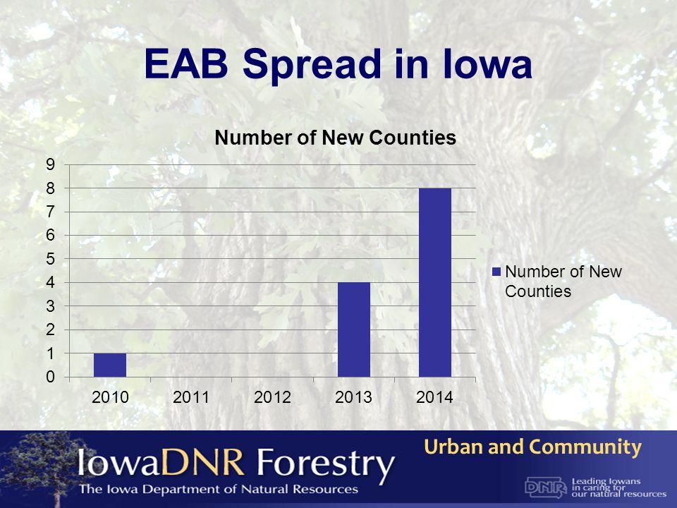 EAB Spread in Iowa