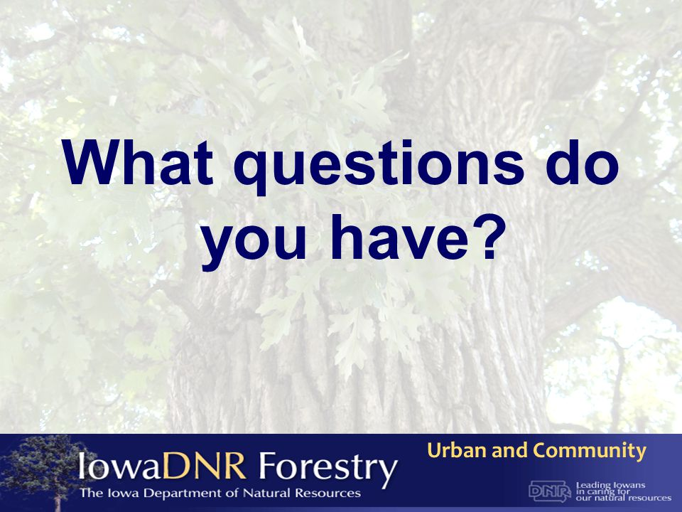 Urban and Community What questions do you have?