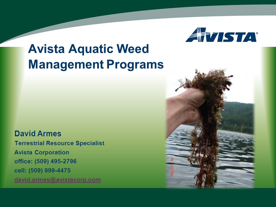 In 2011 Avista Completed: Coordination with agencies, weed management entities and public and community boat launch managers to refine the 2011 Program Task List.