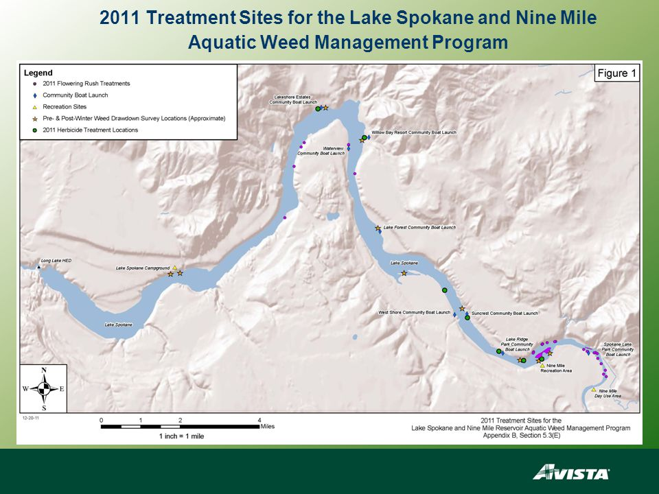 2011 Treatment Sites for the Lake Spokane and Nine Mile Aquatic Weed Management Program