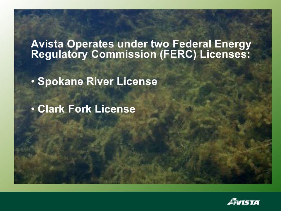 2011 Treatment Sites for the Lake Spokane and Nine Mile Aquatic Weed Management Program