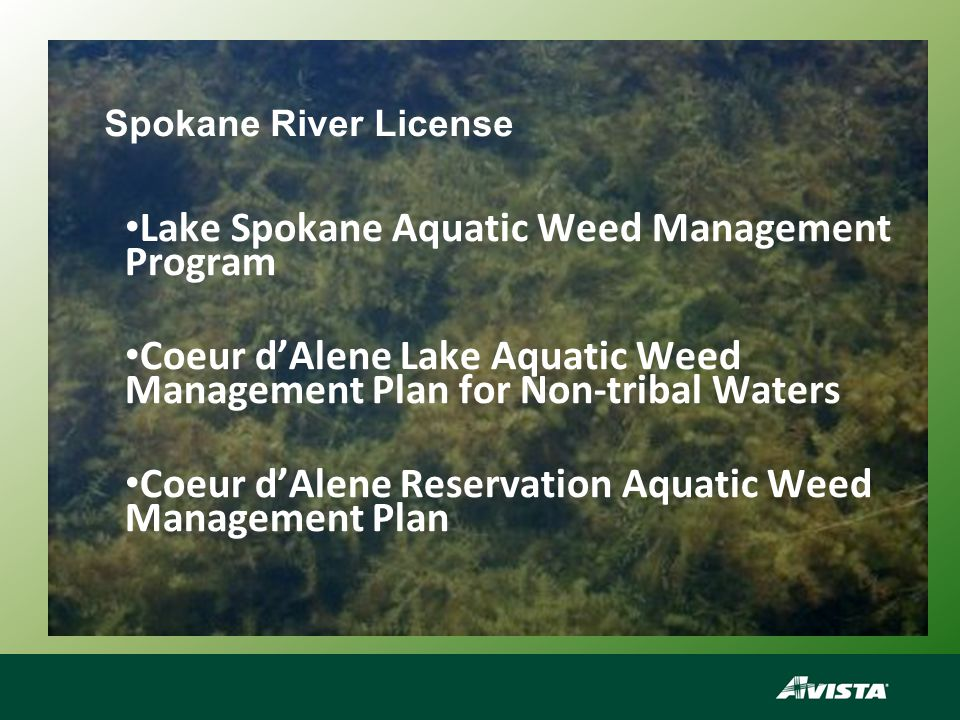 2012 Aquatic Weed Management Tasks A weed control reservoir drawdown of 13-14 feet during January and February.
