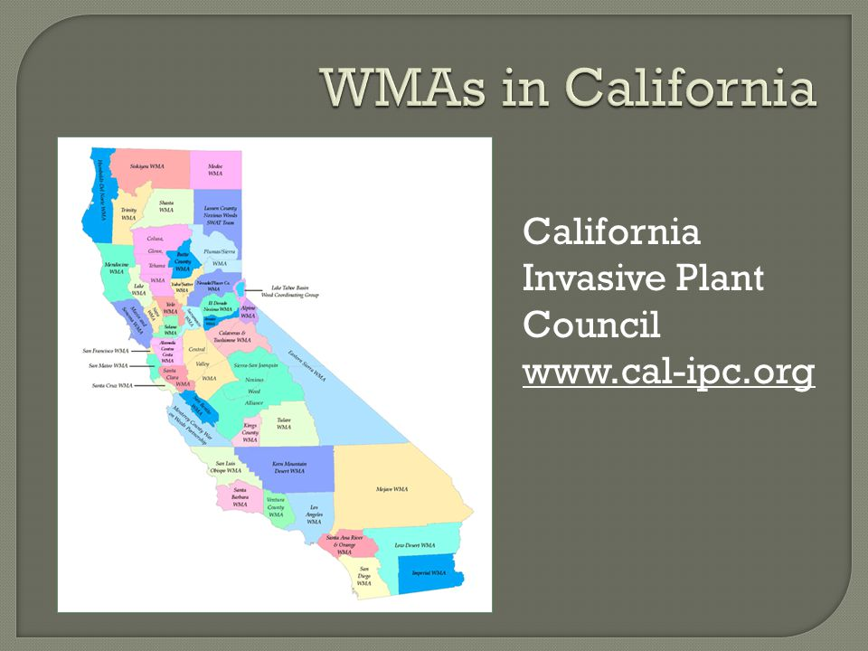 California Invasive Plant Council www.cal-ipc.org