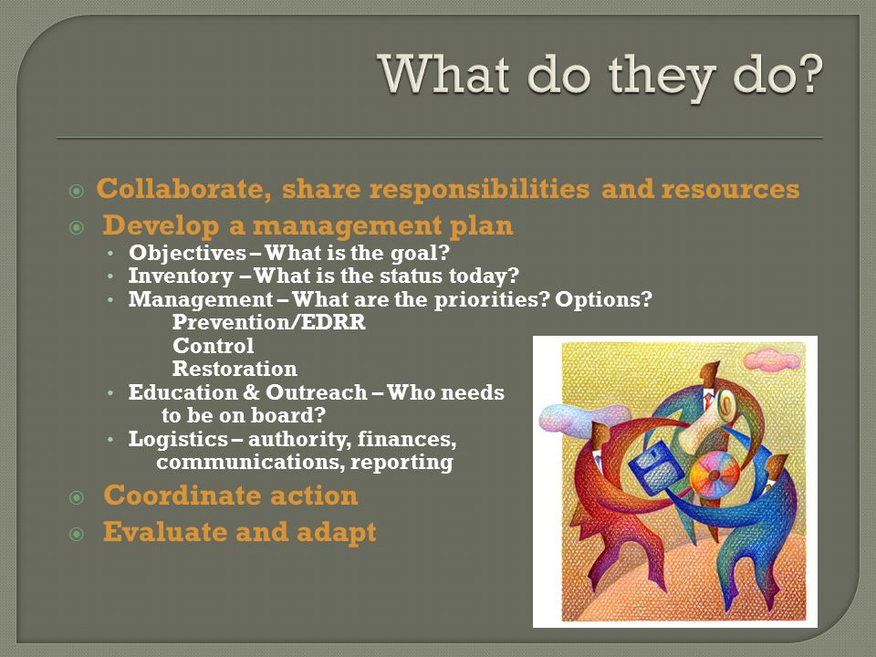  Collaborate, share responsibilities and resources  Develop a management plan Objectives – What is the goal.