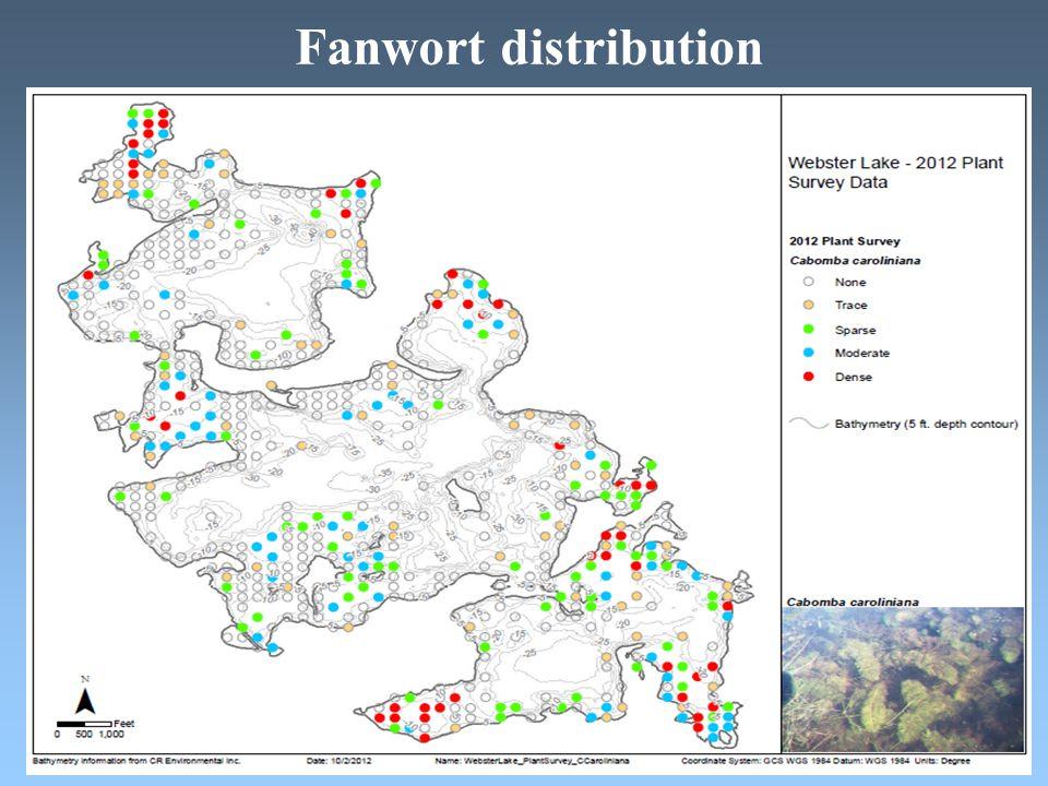 Fanwort distribution