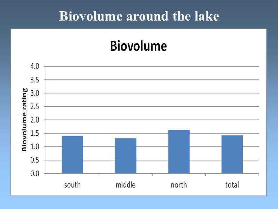 Biovolume around the lake