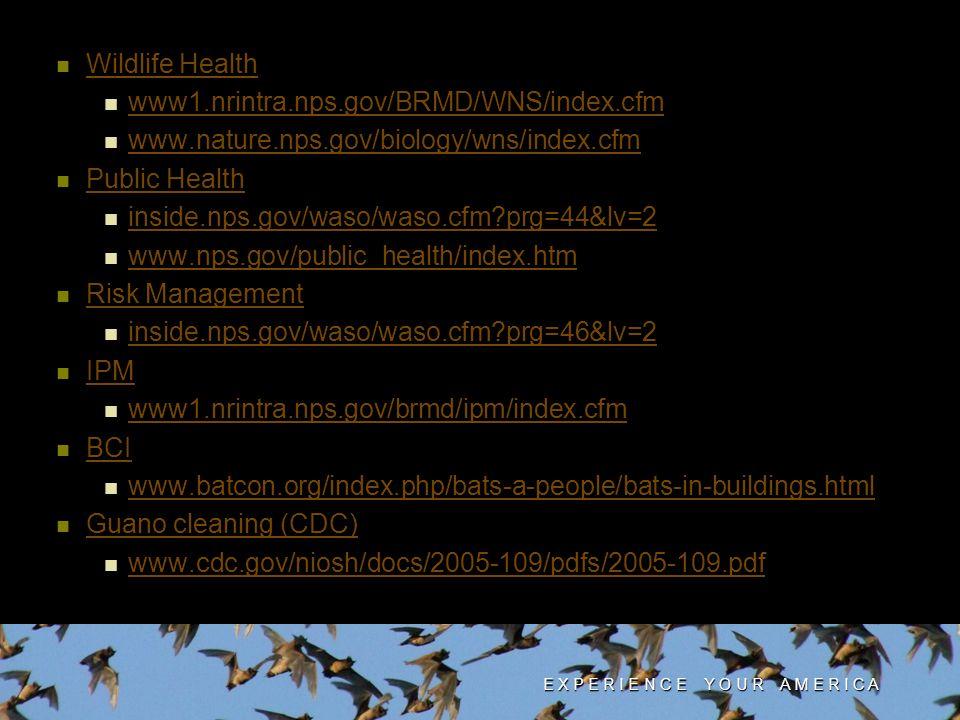 Wildlife Health www1.nrintra.nps.gov/BRMD/WNS/index.cfm www.nature.nps.gov/biology/wns/index.cfm Public Health inside.nps.gov/waso/waso.cfm?prg=44&lv=2 www.nps.gov/public_health/index.htm Risk Management inside.nps.gov/waso/waso.cfm?prg=46&lv=2 IPM IPM IPM www1.nrintra.nps.gov/brmd/ipm/index.cfm www1.nrintra.nps.gov/brmd/ipm/index.cfm www1.nrintra.nps.gov/brmd/ipm/index.cfm BCI BCI BCI www.batcon.org/index.php/bats-a-people/bats-in-buildings.html www.batcon.org/index.php/bats-a-people/bats-in-buildings.html www.batcon.org/index.php/bats-a-people/bats-in-buildings.html Guano cleaning (CDC) www.cdc.gov/niosh/docs/2005-109/pdfs/2005-109.pdf