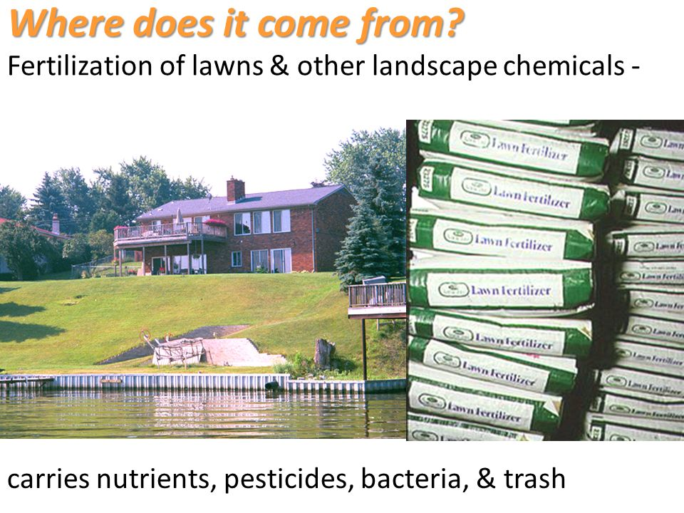 carries nutrients, pesticides, bacteria, & trash Where does it come from.