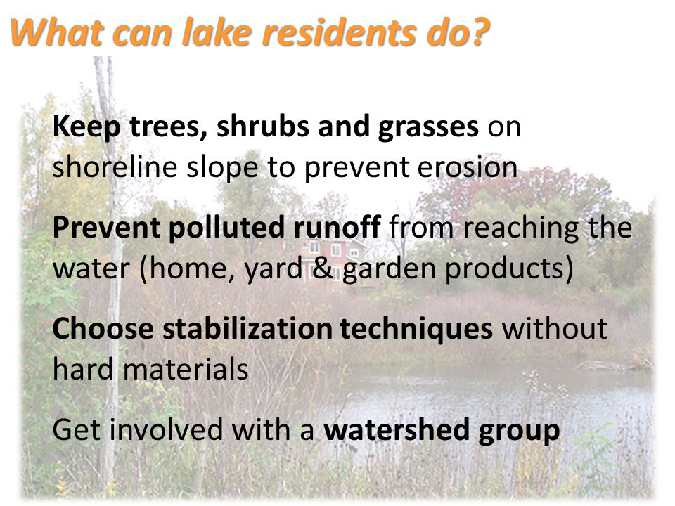 Keep trees, shrubs and grasses on shoreline slope to prevent erosion Prevent polluted runoff from reaching the water (home, yard & garden products) Choose stabilization techniques without hard materials Get involved with a watershed group What can lake residents do?