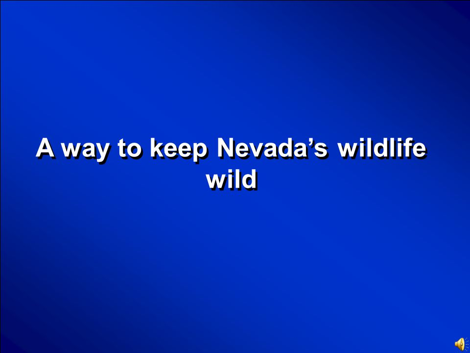 © Mark E. Damon - All Rights Reserved Scores Nevada's Black Bears Final Jeopardy Question