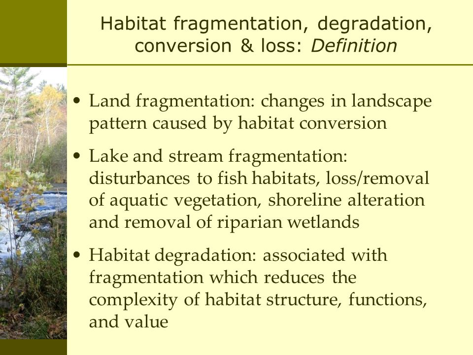 Habitat fragmentation, degradation, conversion & loss: Definition Land fragmentation: changes in landscape pattern caused by habitat conversion Lake and stream fragmentation: disturbances to fish habitats, loss/removal of aquatic vegetation, shoreline alteration and removal of riparian wetlands Habitat degradation: associated with fragmentation which reduces the complexity of habitat structure, functions, and value