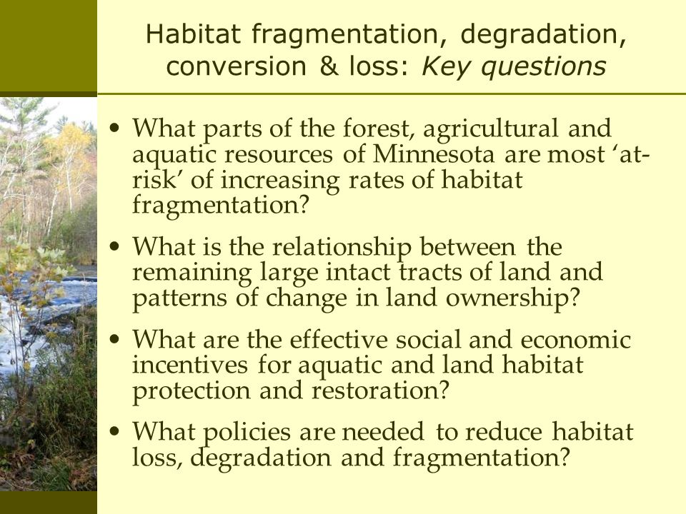 Habitat fragmentation, degradation, conversion & loss: Key questions What parts of the forest, agricultural and aquatic resources of Minnesota are most 'at- risk' of increasing rates of habitat fragmentation.