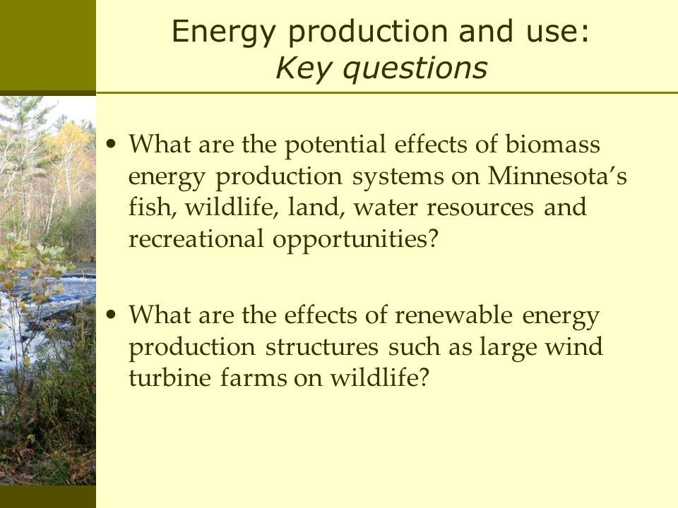 Energy production and use: Key questions What are the potential effects of biomass energy production systems on Minnesota's fish, wildlife, land, water resources and recreational opportunities.