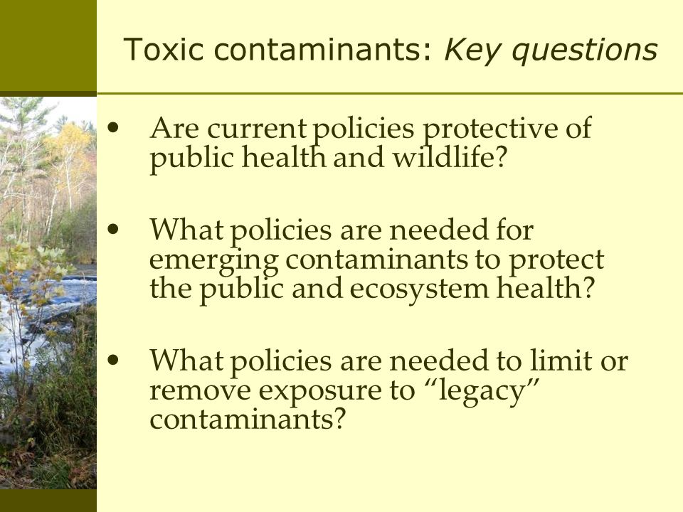Toxic contaminants: Key questions Are current policies protective of public health and wildlife.