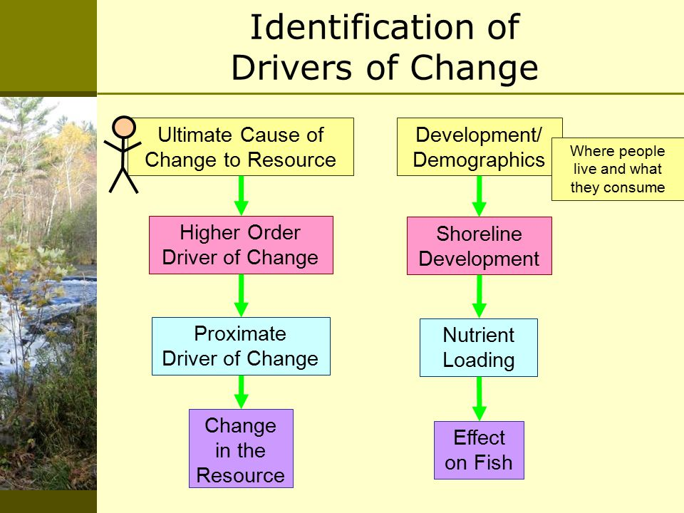 Development/ Demographics Shoreline Development Nutrient Loading Effect on Fish Ultimate Cause of Change to Resource Higher Order Driver of Change Proximate Driver of Change Change in the Resource Identification of Drivers of Change Where people live and what they consume