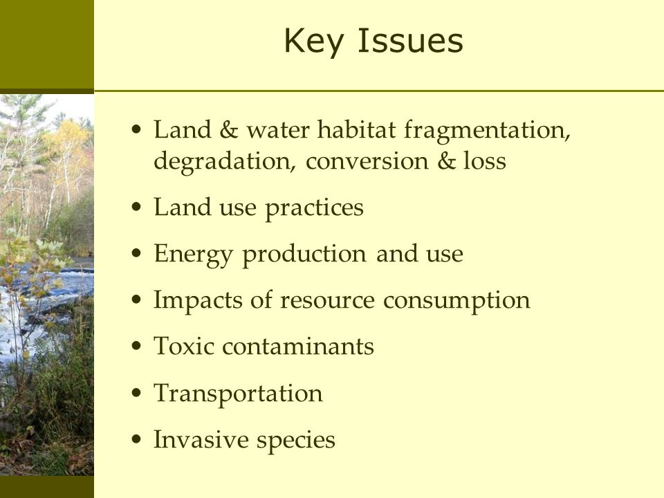 Key Issues Land & water habitat fragmentation, degradation, conversion & loss Land use practices Energy production and use Impacts of resource consumption Toxic contaminants Transportation Invasive species