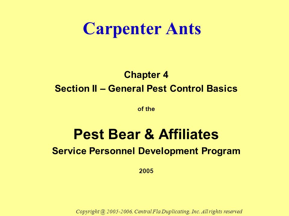 General Information Carpenter ants are members of the Camponotus group They are very conspicuous because of their size They are commonly found in and around homes They are blackish or dark-bodied Copyright @ 2005-2006, Central Fla Duplicating, Inc.
