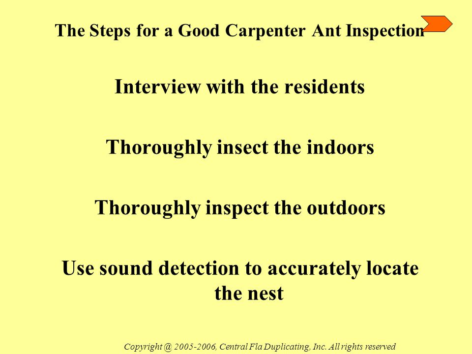 The Steps for a Good Carpenter Ant Inspection Interview with the residents Thoroughly insect the indoors Thoroughly inspect the outdoors Use sound detection to accurately locate the nest Copyright @ 2005-2006, Central Fla Duplicating, Inc.