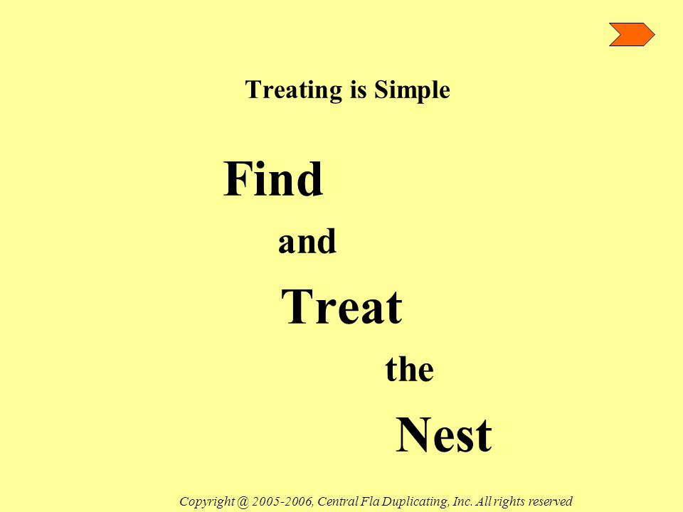 Treating is Simple Find and Treat the Nest Copyright @ 2005-2006, Central Fla Duplicating, Inc.