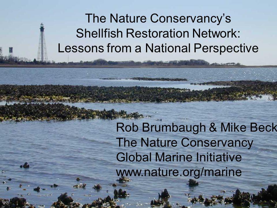 Rob Brumbaugh & Mike Beck The Nature Conservancy Global Marine Initiative www.nature.org/marine The Nature Conservancy's Shellfish Restoration Network