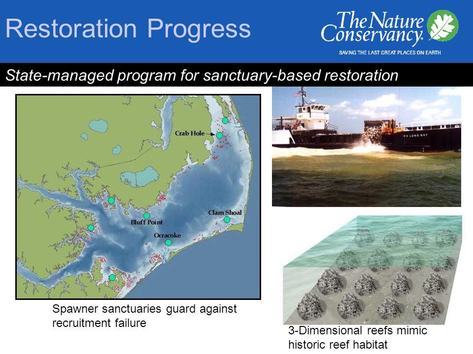 Restoration Progress State-managed program for sanctuary-based restoration Spawner sanctuaries guard against recruitment failure 3-Dimensional reefs mimic historic reef habitat