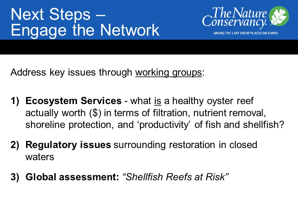 Next Steps – Engage the Network Address key issues through working groups: 1)Ecosystem Services - what is a healthy oyster reef actually worth ($) in terms of filtration, nutrient removal, shoreline protection, and 'productivity' of fish and shellfish.