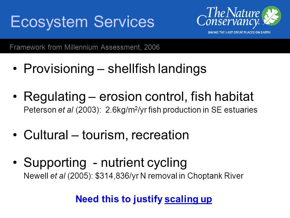 Ecosystem Services Provisioning – shellfish landings Regulating – erosion control, fish habitat Peterson et al (2003): 2.6kg/m 2 /yr fish production i