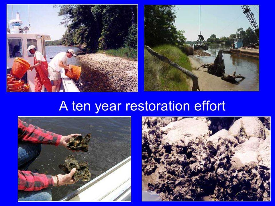A ten year restoration effort