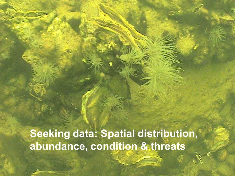 Seeking data: Spatial distribution, abundance, condition & threats