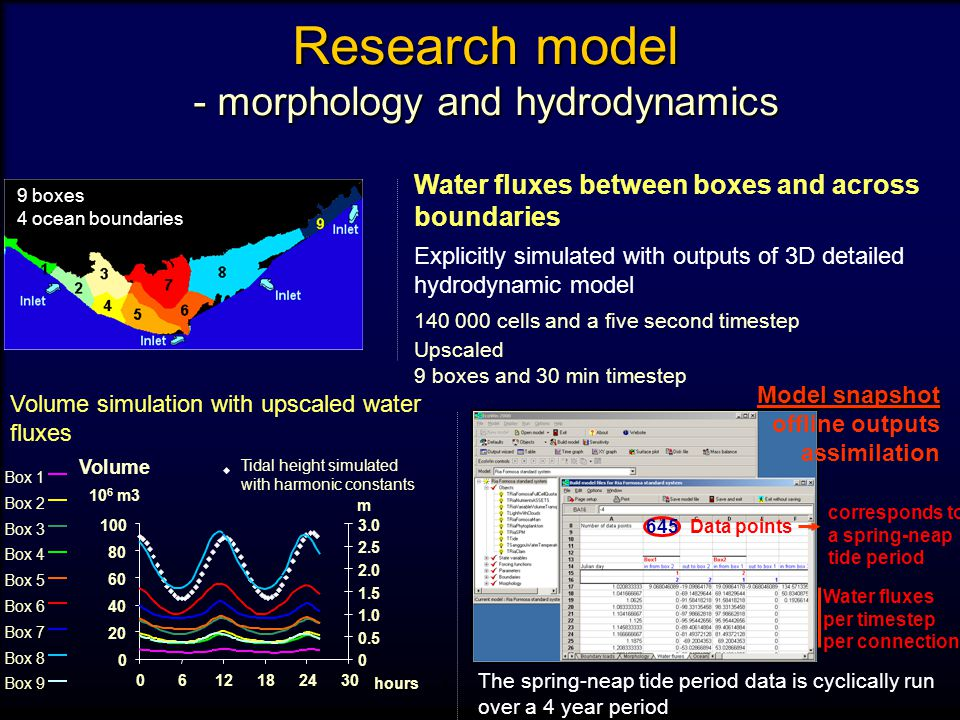 Research model - morphology and hydrodynamics Water fluxes between boxes and across boundaries Explicitly simulated with outputs of 3D detailed hydrodynamic model 140 000 cells and a five second timestep Upscaled 9 boxes and 30 min timestep 9 boxes 4 ocean boundaries The spring-neap tide period data is cyclically run over a 4 year period Volume simulation with upscaled water fluxes 1 Model snapshot offline outputs assimilation Water fluxes per timestep per connection Data points 645 corresponds to a spring-neap tide period